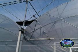 拱形连栋温室