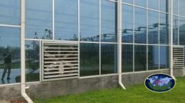 纹络式连栋温室